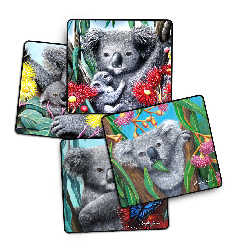 Koala Drink Coasters - 4 Assorted in a Gift Box